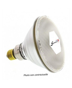 Ampoule blanche 250 watts SOFRACA LIAMP04
